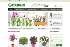 Plantje.nl - planten vers van de kweker thuisbezorgd